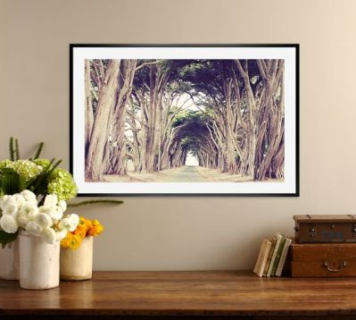 tree-avenue-framed-print-by-lupen-grainne-c