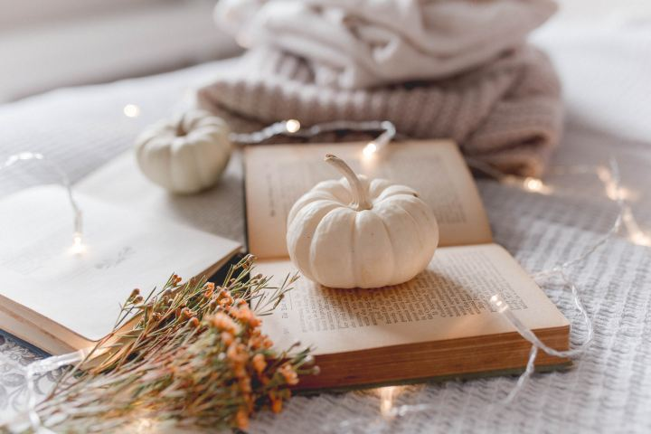 Ready for Fall Decor?